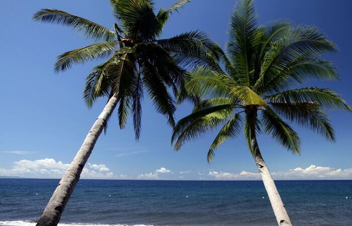Atlantis Dumaguete Beach Resort