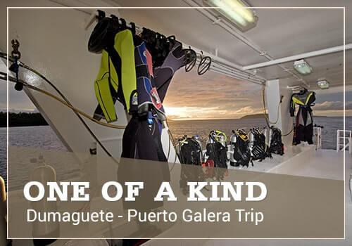 one of kind trip promo dumaguete to puerto galera