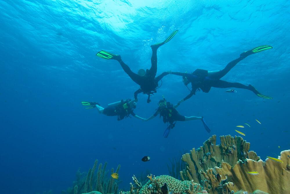 PADI-Experienced-Diver-Program