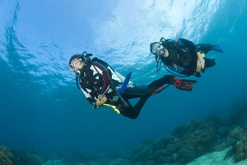 Dive Apo Isand, Apo Island diving, dive dumaguete