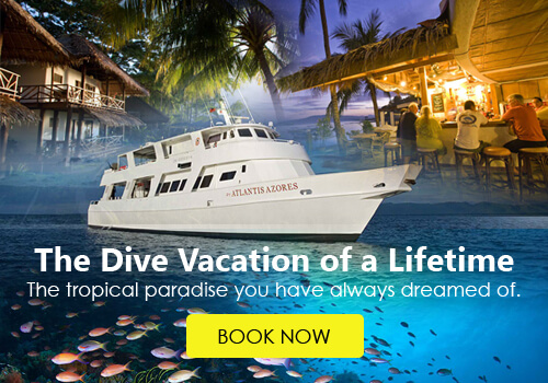 Atlantis Puerto Galera Diving Promo 50-percent